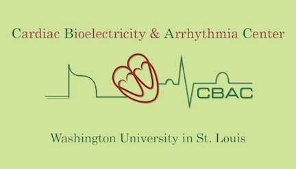Cardiac Bioelectricity and Arrhythmia Center