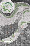Up 'Schert Creek: Responsible Floodplain Development by Brendan Wittstruck